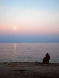 Sunset and full moon on the sea shore with a domestic cat. Tranquil landscape relaxation and serenity Royalty Free Stock Images
