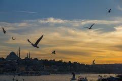 Sunset from Galata Bridge. Istanbul,Turkey stock photo