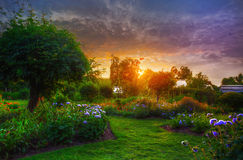 Superieur Sunset In The Garden Stock Photo
