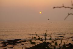 Sunset in Goa, India. View from the tree branches Stock Photo