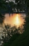 Sunset in gold. Gold-like sunset in natural frame with a reflection of a concrete bridge royalty free stock photos