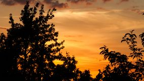 Sunset - the Golden sky from the rays of the setting sun. royalty free stock photography