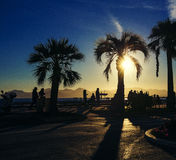Sunset with golden tones & sun flare in Cannes Croisette Stock Photos
