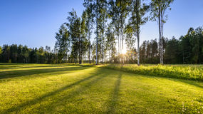 Sunset on golf course in Poalnd Royalty Free Stock Photo