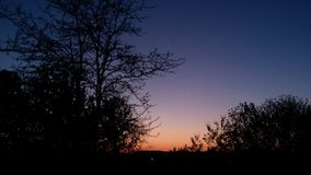 Sunset gradient. Another sunset gradient behind trees Stock Photography