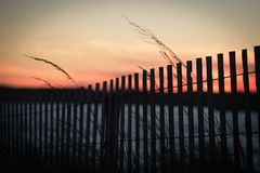 Sunset on grassy dunes east coast bay Royalty Free Stock Image
