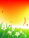 Sunset on green field, summer background. Vector illustration Stock Images