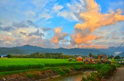 Sunset with Green Field View and Mountain stock photos