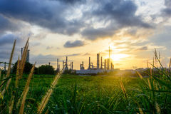 Sunset green grass field and Oil refinery backgrounds Royalty Free Stock Photography