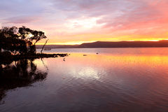 Sunset at Green Point with Koolewong in  distance Royalty Free Stock Image