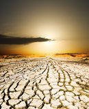 Sunset on the ground dried. By dryness stock images