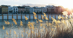 Sunset on the Guadalquivir river in the neighborhood of triana,. Seville, Spain stock photos