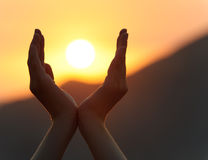 Sunset in hands. Decline in hands. A sunset on a background of the lifted female hands Royalty Free Stock Photography