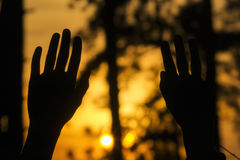 Sunset Hands Royalty Free Stock Photography