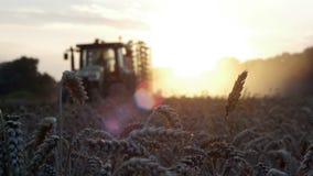 Sunset harvest stock footage