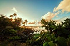Sunset at Hawaii. Stock Photography