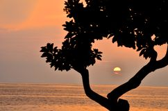 Sunset in hawaii. Silhouette sunset in Hawaii, taken at Magic Sands beach Stock Photos