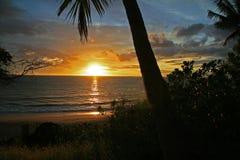Sunset on a Hawaiian beach. Beautiful Gold and Blue Hawaiian Sunset On The Beach with palm trees Stock Photography