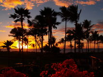 Sunset at Hawaiian luau. Bright sunset at Hawaiian luau with trees in foreground and ocean in background Stock Photos