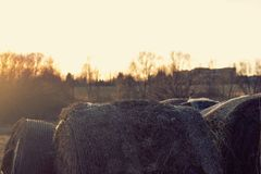 Sunset at hay bale. In a village Stock Images