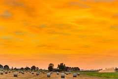 Sunset on hay bales. Blue hour of sunset on round hay bales in a harvested field , rural and bucolic atmosphere of a hot summer day Stock Photo