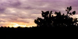 Sunset in heather landscape that are dark silhouettes, colorful sky and clouds royalty free stock image