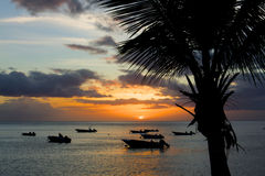 Sunset on the heavenly caribbean island Guadeloupe Royalty Free Stock Image