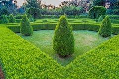 sunset on the hedges of an Italian garden Royalty Free Stock Photos
