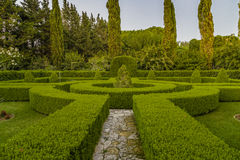 sunset on the hedges of an Italian garden Royalty Free Stock Photography
