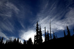 Sunset at Helm Creek. Sunset view at Helm Creek in Garibaldi Park with tree silhouettes and cloudy blue sky royalty free stock photo