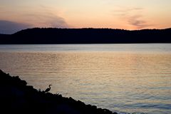 Sunset with heron Royalty Free Stock Photos