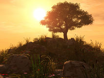 Sunset Hill. 3D Render - Landscape - Backlit Hill with Solitary Tree Stock Images