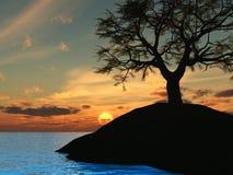 sunset holm2 drzewo. ilustracja wektor