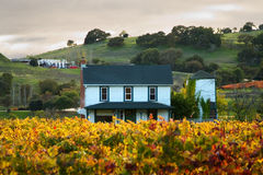 Sunset at a home in a Sonoma Vineyard Royalty Free Stock Photo