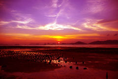 Sunset in Hong Kong Royalty Free Stock Photography