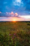 Sunset on the horizon with sky over a rural field and the sea in the background. Sunset, Sunrise over rural meadow field. royalty free stock image