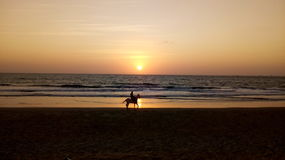 Sunset. Horse ride during sunset Royalty Free Stock Images