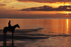 Sunset Horse-riding Royalty Free Stock Photos