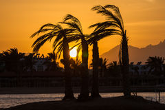 Sunset in Hurghada, Egypt Stock Images