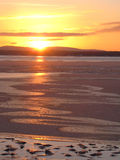Sunset on the ice-covered sea Royalty Free Stock Photo