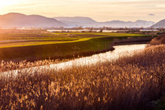 Sunset illuminates the fertile fields and water canals Royalty Free Stock Images