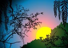 Sunset illustration Stock Photos