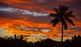 Tropical Sunset Oahu Hawaii royalty free stock images