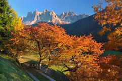 Sunset In The Dolomite Alps Royalty Free Stock Images