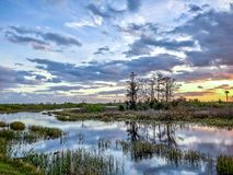 Sunset In The Swamp Royalty Free Stock Image