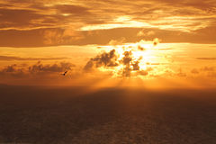 Sunset on indian ocean. Stock Photos