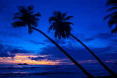 Sunset on the island beach. Silhouette scenery view sunset on the island sand beach with coconut tree with the bending shape on the foreground photo caption Royalty Free Stock Image