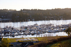 Sunset Island Marina Stock Photography