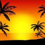 Sunset on island Stock Images