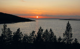 Sunset on the islands of White sea. Sun setting over the sea with pine trees in foreground. Kem skerry, White sea, Russia royalty free stock photo